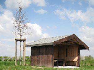 Bäume für Manheim-neu